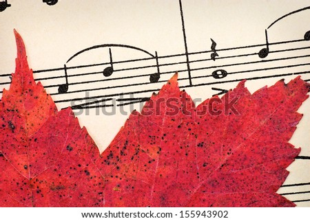 Bright Colored Autumn Leaf on Sheet Music - stock photo