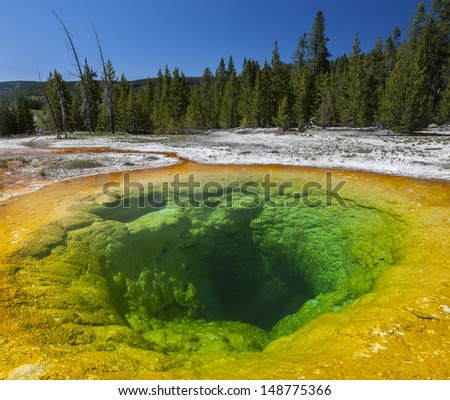 Bright colors of the Morning Glory Pool in Yellowstone National Park of Wyoming
