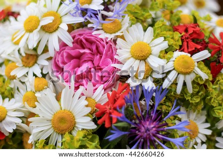 Bright colourful  bunch of wild flowers, bouquet of chamomille, cornflowers, roses and phloxes close up - stock photo