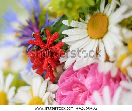 Bright colourful  bunch of wild flowers, bouquet of chamomille, cornflowers, roses and phloxes with water drops on it - stock photo