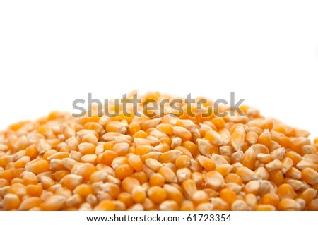 Bright corn kernels arranged in a pile - stock photo