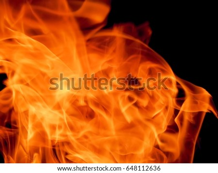 Bright fire flame on a black background