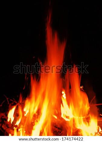 Bright fire on the dark - stock photo