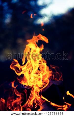 Bright flame of bonfire. Defocused. Toned. - stock photo