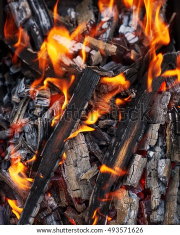 Bright flames. BBQ grill. Hot coal. Burned wood