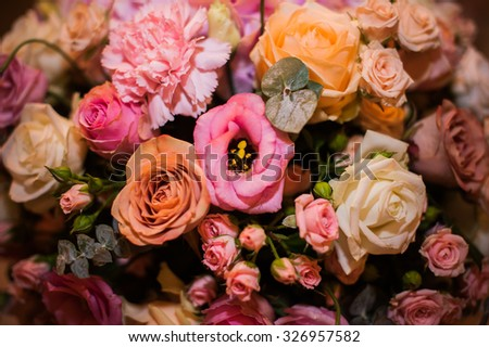 Bright flowers background close up pink and orange  - stock photo