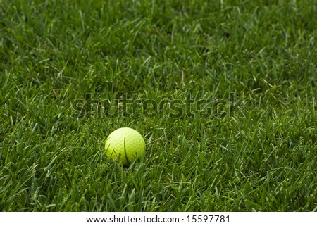 bright fluorescent yellow golf ball lying in semi-rough grass
