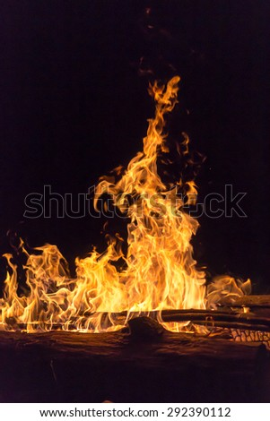 Bright golden color flames from a campfire at night - stock photo