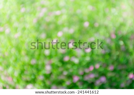 Bright green and pink blur bokeh abstract light flora background. - stock photo