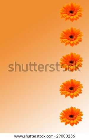 Bright orange floral background in vertical landscape. This could be used for paper; cards; background etc - stock photo