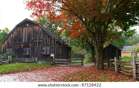 Bright red sugar maple leaves are strewn on the country lane leading to an old weathered wood barn and rail fence. Horizontal format. - stock photo