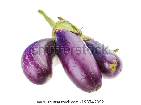Bright ripe violet eggplant isolated - stock photo