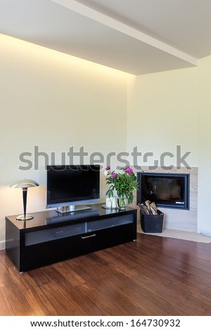 Bright space - a modern tv set and a fireplace - stock photo