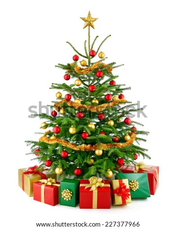 Bright studio shot of a gorgeous lush Christmas tree decorated in red and gold, with colorful gift boxes arranged in front of it, isolated on pure white background - stock photo