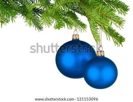 Bright studio shot of two isolated blue Christmas baubles hanging from fresh green fir twigs