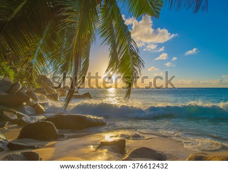 Bright sunset on sandy tropical palm beach with large granitic boulders, Anse Georgette, Praslin island, Seychelles, nature background - stock photo