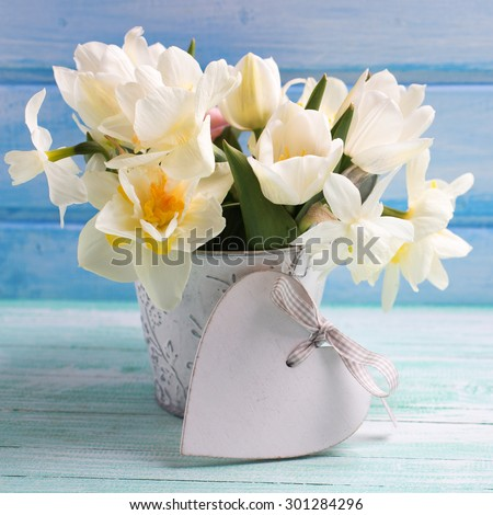Bright white daffodils and tulips  flowers in bucket and decorative heart on turquoise  painted wooden planks against blue wall. Selective focus. Square image. - stock photo