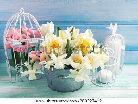 Bright white daffodils and tulips  flowers in bucket, candles on turquoise  painted wooden planks against  blue wall. Selective focus. Toned image.  - stock photo