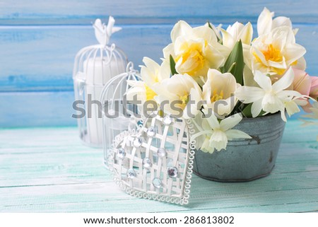 Bright white daffodils and tulips  flowers in bucket, decorative heart and candles on turquoise  painted wooden planks against  blue wall. Selective focus.  - stock photo