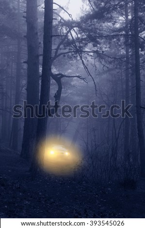 Bright yellow headlights of car in dark blue foggy forest. Soft focus.