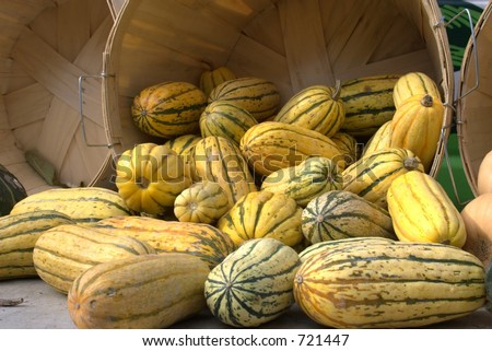 brightly colored squash at the market - stock photo