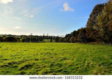 Brilliant morning on a pasture in Standish, England. - stock photo