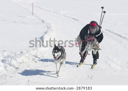 bringing home the wounded - stock photo