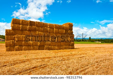 Briquettes of Dry Hay in a Field in Southern France - stock photo