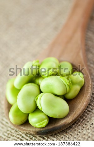 broad beans in wooden spoon on jute background - stock photo
