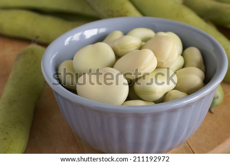 Broad beans or fava beans a popular legume in North African and Asian cuisine - stock photo
