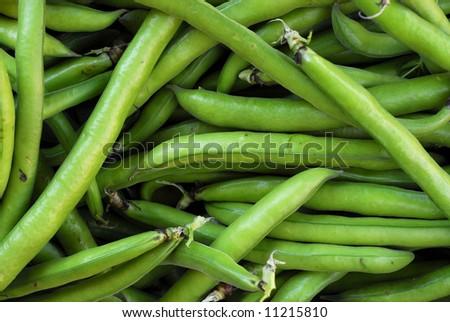 broad beans shells closeup - stock photo