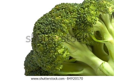 Broccoli cabbage closeup on white background isolated