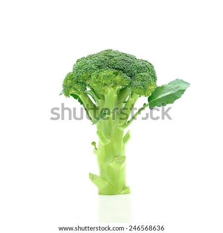 Broccoli raw vegetable on isolate background - stock photo