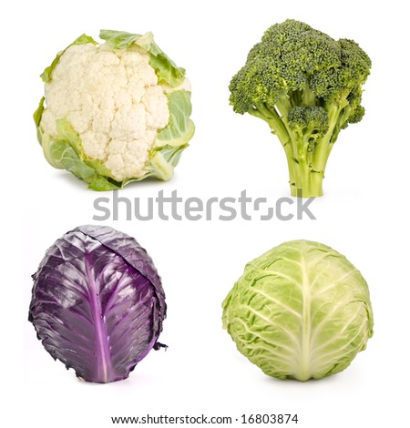 Broccoli, red cabbage, cabbage and cauliflower isolated on white - stock photo
