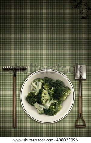 broccoli vintage scene - stock photo