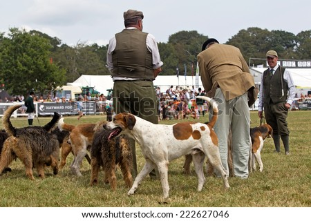 BROCKENHURST, UK - JULY 31: Members of a local hunt group show their pack of mixed hounds to the public before inviting them into the arena at the New Forest show on July 31, 2014 in Brockenhurst  - stock photo