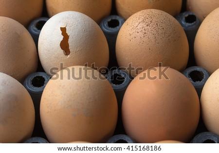 Broken Egg, Chicken Egg - stock photo