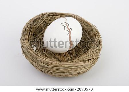 Broken retirement nest egg - stock photo