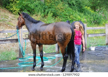 BROMONT-CANADA JULY 29: Unknown riders wash their horse during 2011, INTERNATIONAL BROMONT on July 29, 2011 At the Equestrian 1976 Montreal Olympic Park. - stock photo