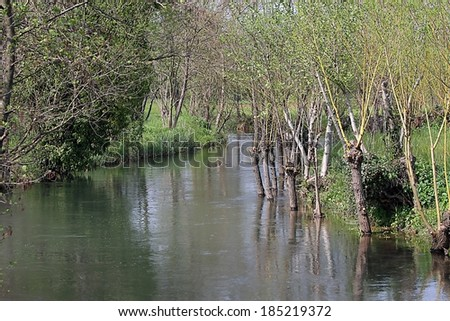 Brook and source of the river Bacchiglione in Vivaro di Dueville, province of vicenza in Italy - stock photo