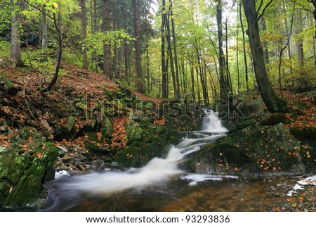 Brook in autumn forest - stock photo