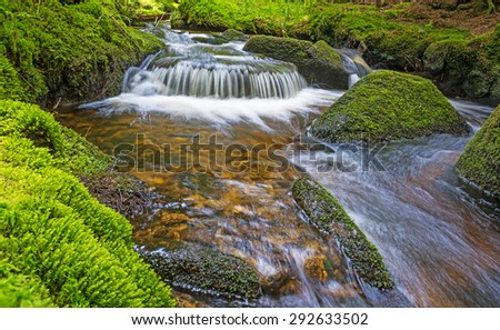 brook in forest , Sumava, Czech republic, Europe - stock photo