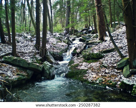 Brook Trout Stream in Central Pennsylvania. - stock photo