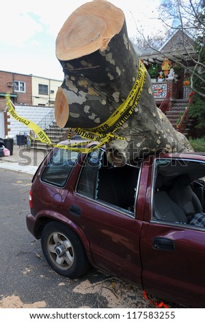 BROOKLYN, NY - NOVEMBER 03: Tree felt down to the car in the Sheapsheadbay neighborhood due to strong wind from Hurricane Sandy in Brooklyn, New York, U.S., on Saturday, November 03, 2012.