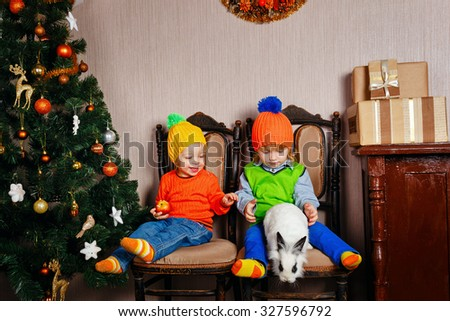 Brother, sister eating apples sitting on a chair next to the Christmas tree. Cute little kids. Rabbit runs away from children. Happy family and Merry Christmas. - stock photo