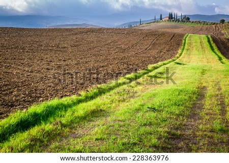 Brown and green fields of Tuscany in autumn - stock photo