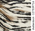 Brown and white tiger skin artificial pattern background. - stock photo