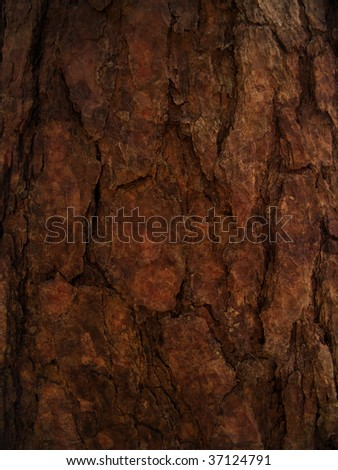 brown bark background - stock photo