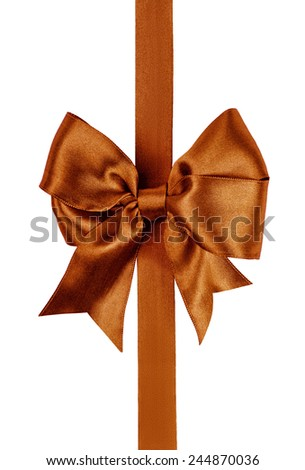 brown bow made from silk ribbon isolated