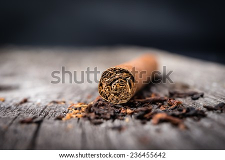 brown cigar  with tobacco leaves on grey wooden table - stock photo